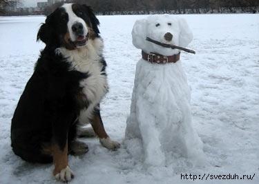 Фото. Снежные фигуры... попробуем сделать такие же, но из пуха?