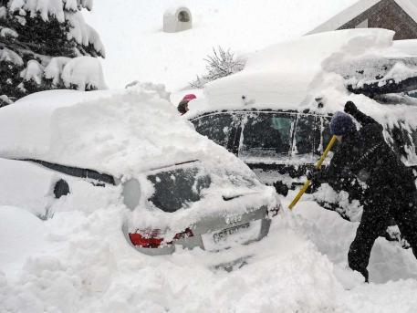 Фото Донецка. Не оставляйте свой автомобиль надолго под тополями :)