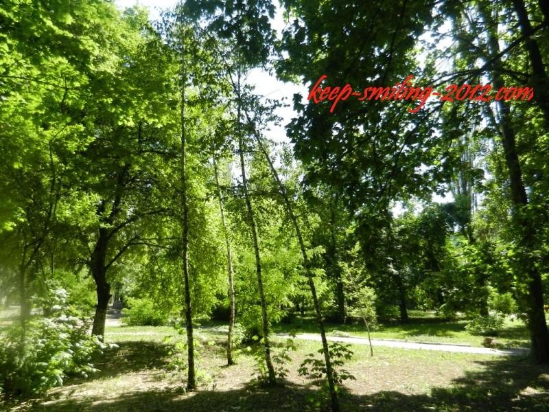 Фото Донецка. Зеленые тона.