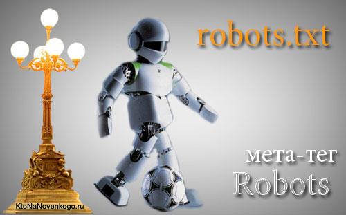 Возможна ошибка в файле robots.txt. Обязательно проверьте его на своем сайте!